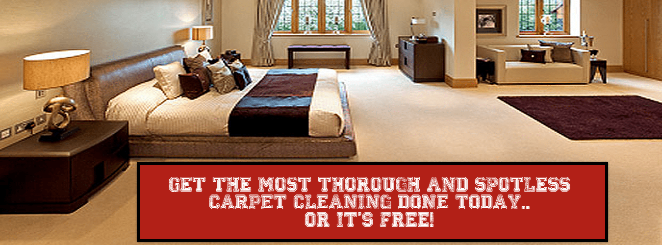 best carpet cleaning in alpharetta ga